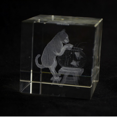 Krychle 60 mm s 3D motivem - kočka