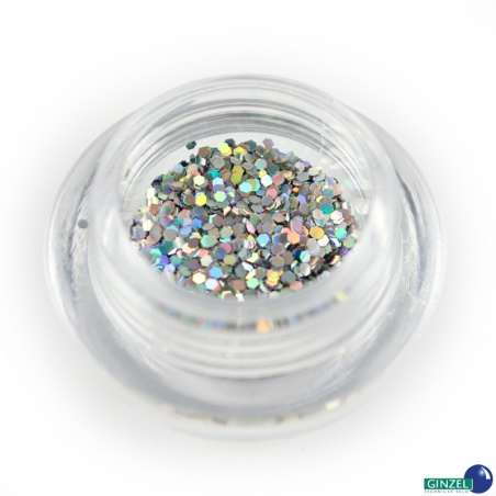 Polyester Glitter 2504/ 50A-3hex hologram silver